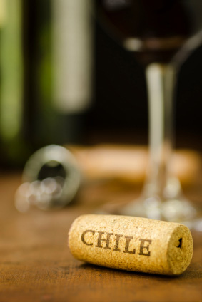 chilean-red-wine