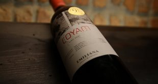 Emiliana-Coyam-Wine