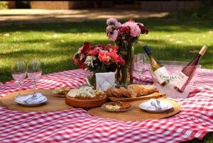 Picnic-at-Emiliana-Winery