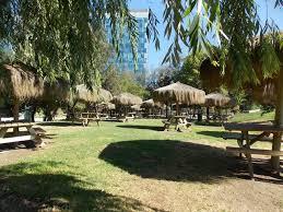 Picnic in Parque Araucano