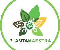 Planta Maestra Santiago Chile