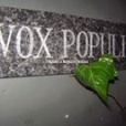 Vox Populi Gay Bar in Santiago