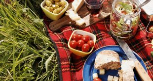 foods options for your picnic in Santiago